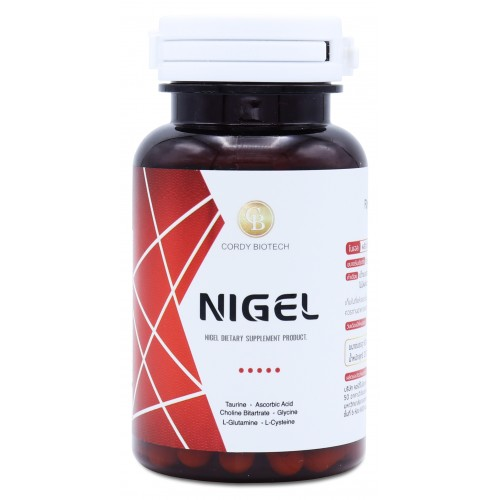 ไนเจล Nigel